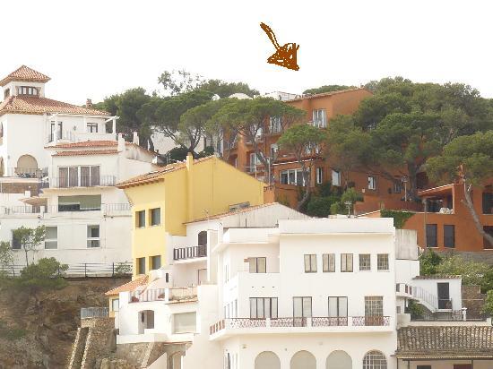 Una escapada gastron mica en plena costa brava dive in - Casa mar llafranc ...